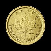 1,581 g, Zlatni Kanadski javorov list