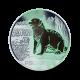16 g (Cu/Ni), Vidra - 3 € zbirateljski kovanec (2019), serija Živali v barvah