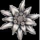 31,1 g, Mongolia - Mountain Star Silver Coin, 2019