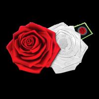 31, 07 g srebrnik Vrtnica